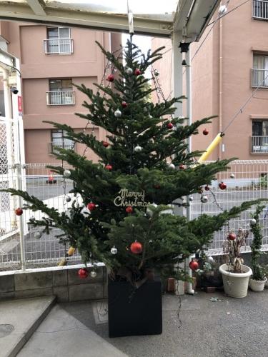 クリスマスの次は…!